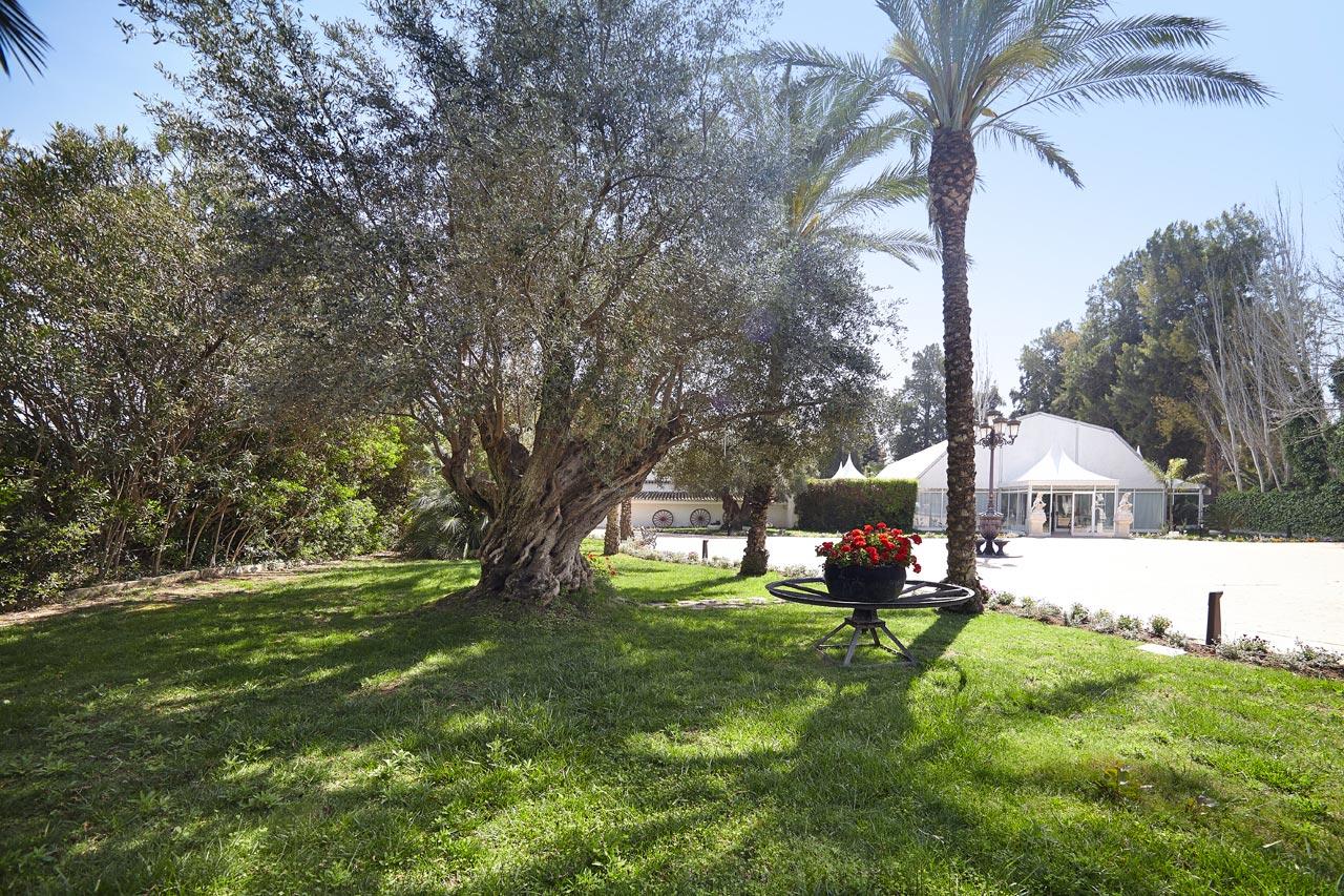 Sal n ibiza jardines la hacienda for Jardines la hacienda